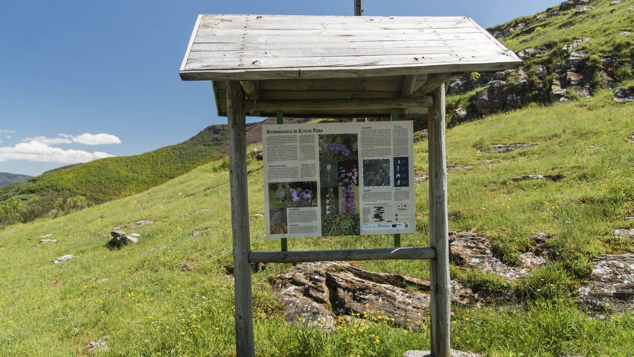 Panel explicativo en una reserva de orquídeas silvestres en la sierra de O Courel