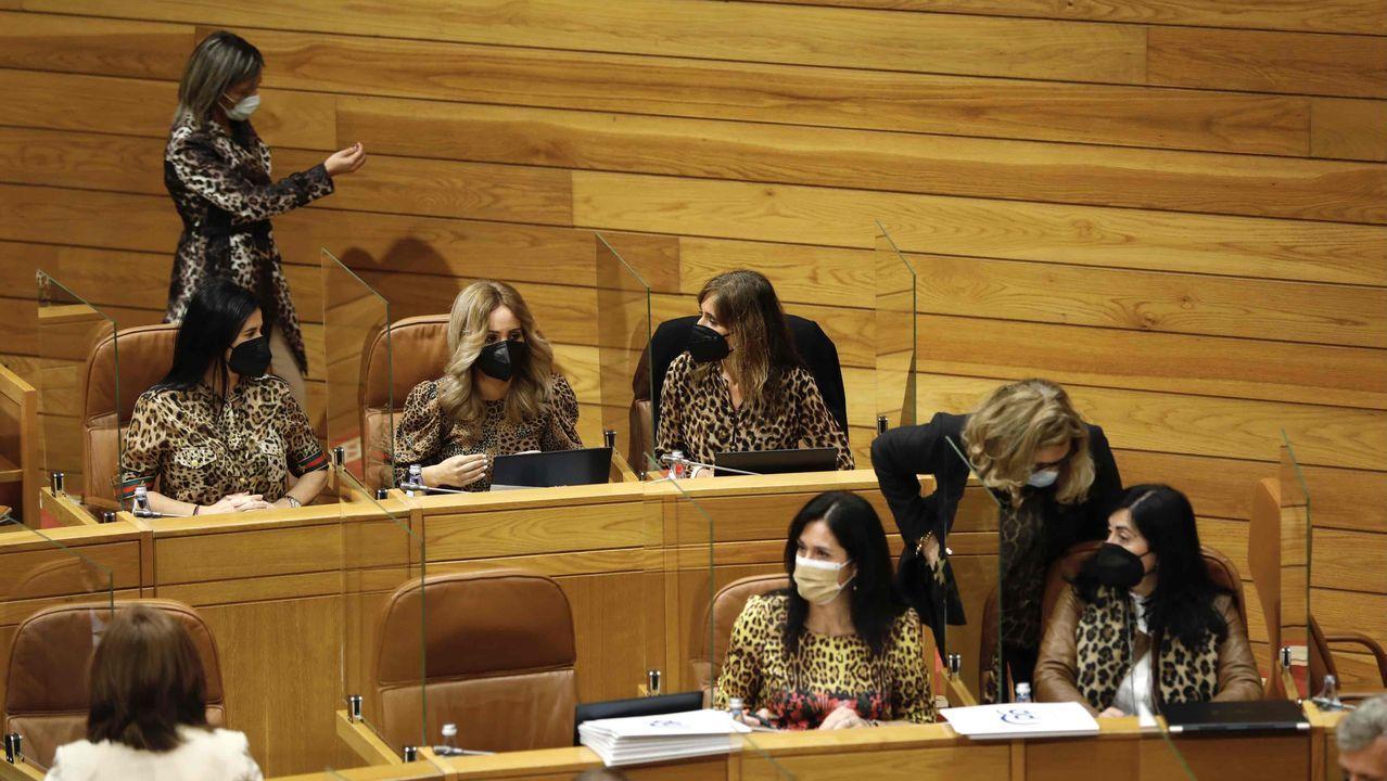 Diputadas del PP, esta mañana en el Parlamento de Galicia, ataviadas en solidaridad con Elena Candia (primera desde la derecha)