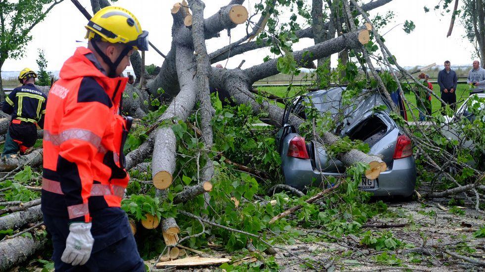 Un árbol corta el acceso a Moaña y destroza un árbol.Rodaje de «reStart» en el entorno del cabo Vilán.