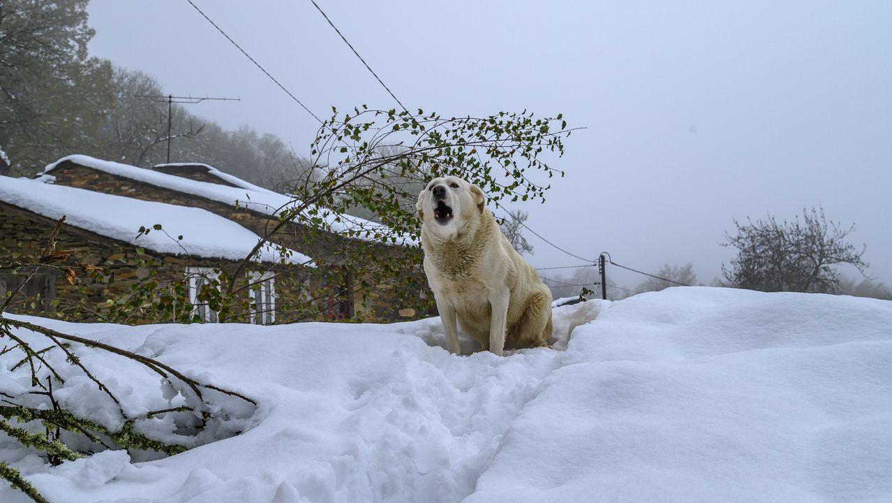 El Miño rebosando.Nieve en la aldea de A Veneira de Roques, en A Pobra do Brollón