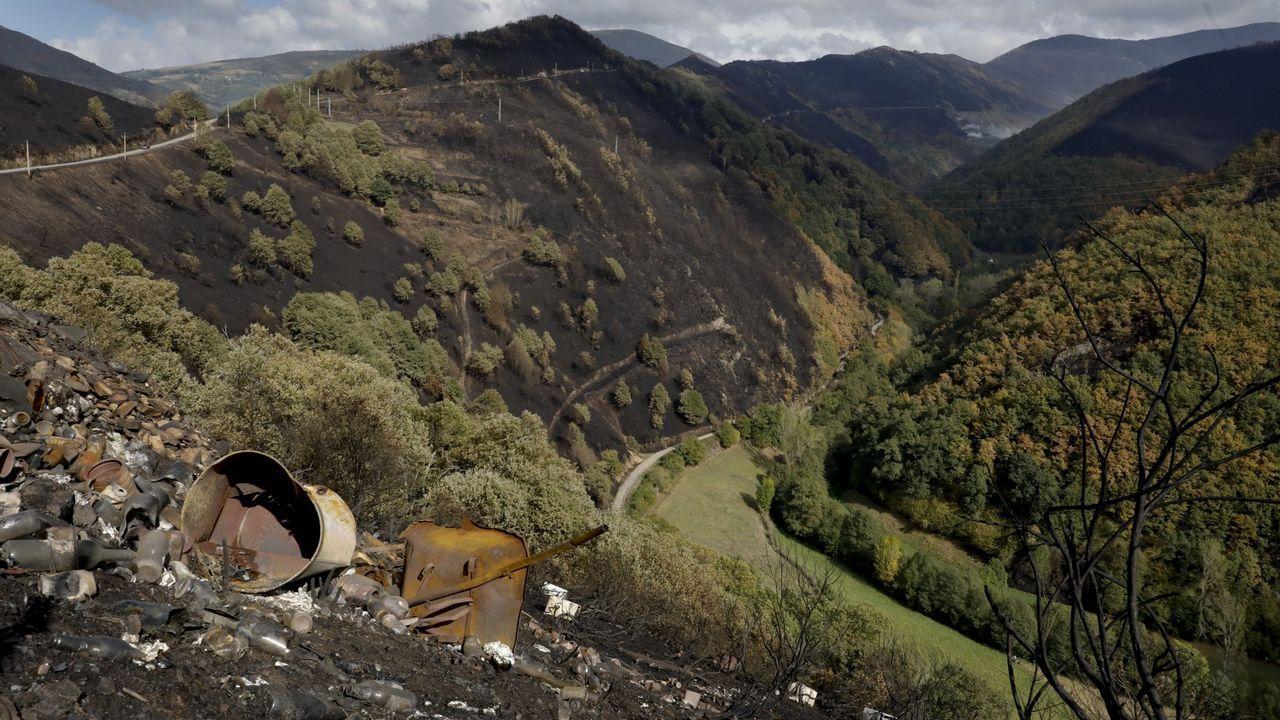 San Martín de Cereixedo, hace un año. Los vecinos de esta aldea, que tuvo que ser desalojada, se encontraron todo el monte quemado. El rebrote en el terreno es lento porque la quema fue severa, por lo que la extensión de paja fue necesaria.