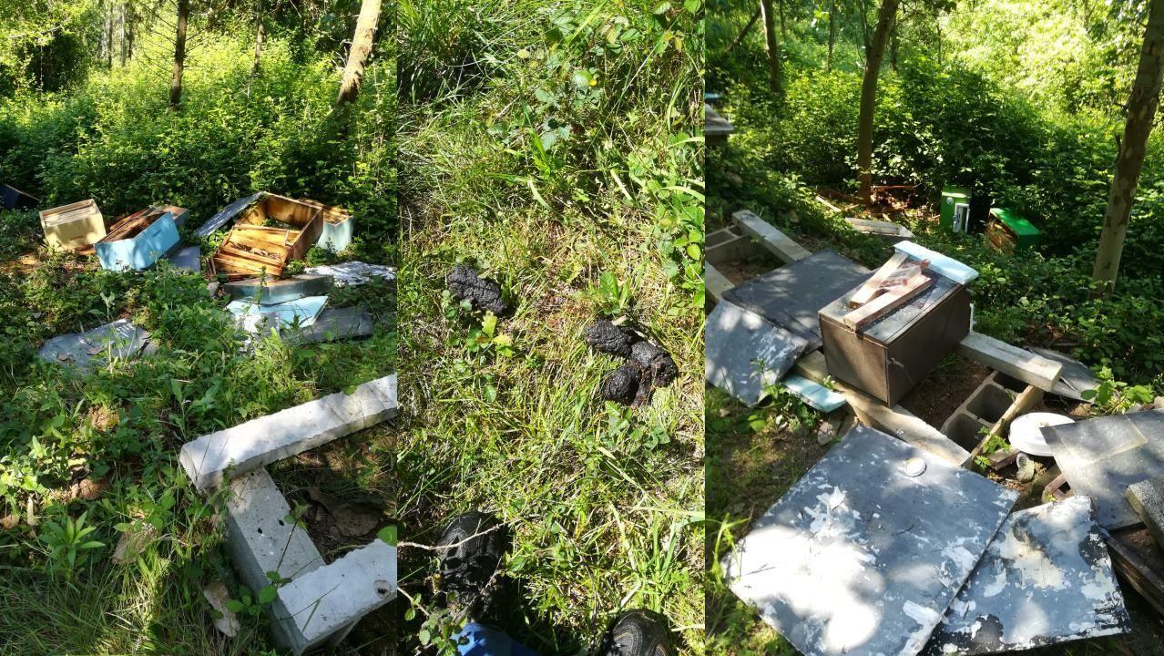 Terrazas improvisadas en Lugo.Destrozo causado por un oso en unas colmenas de A Fonsagrada