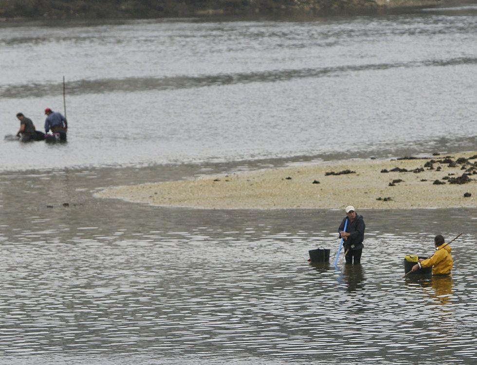 Un grupo de mariscadores faenando el mes pasado en aguas de la ría de O Burgo.