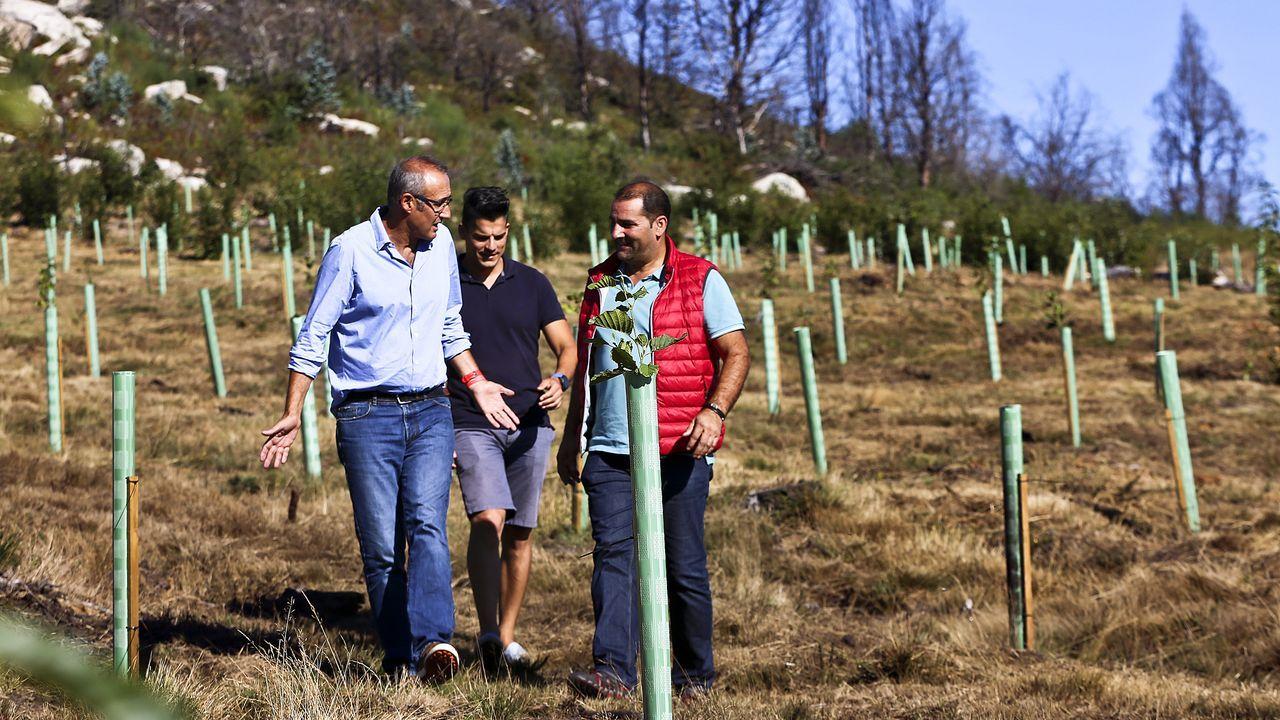 El alcalde de Nigra´n conversa con el presidente de la comunidad de montes de Chandebrito, en la ultima zona repobladar