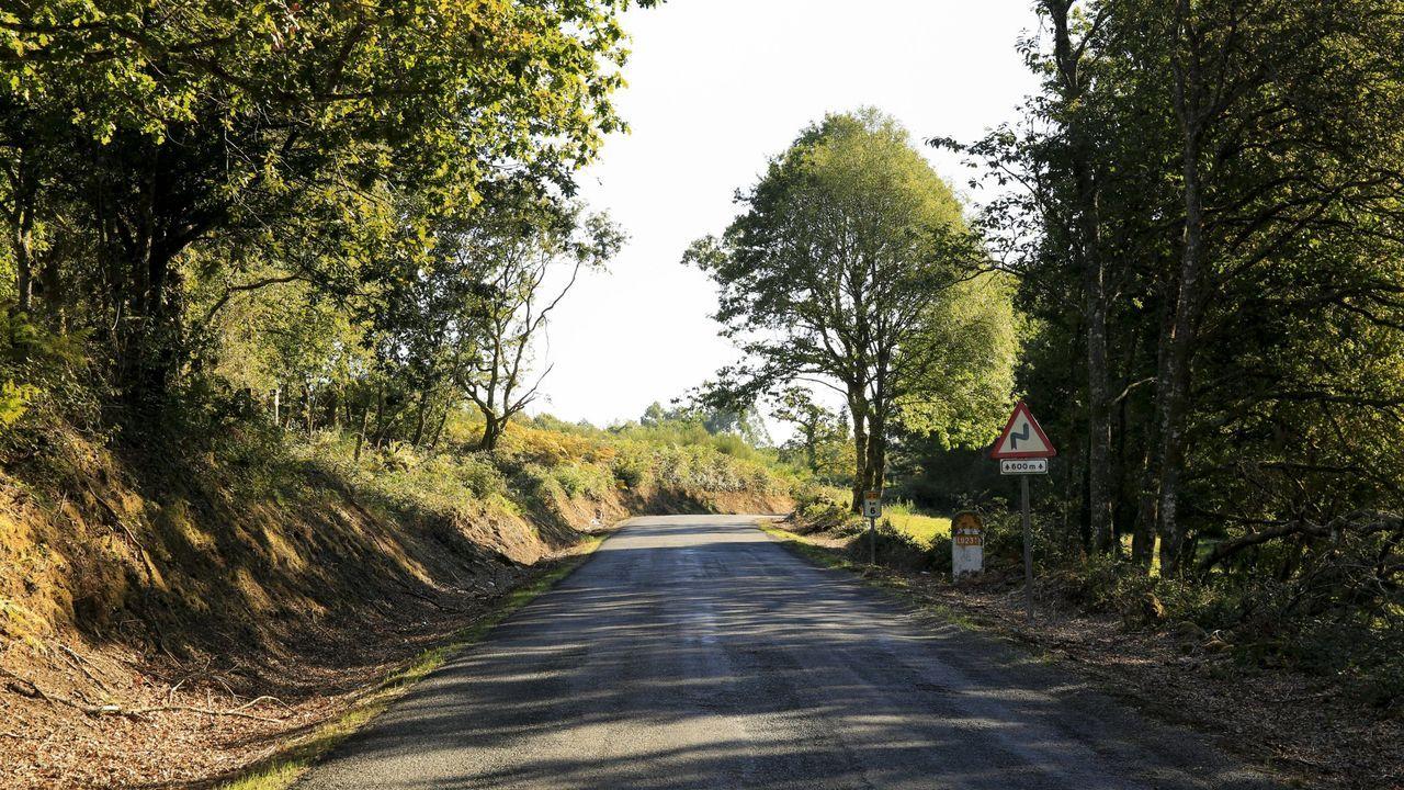Vista de la carretera en el tramo que pasa por el municipio de Friol