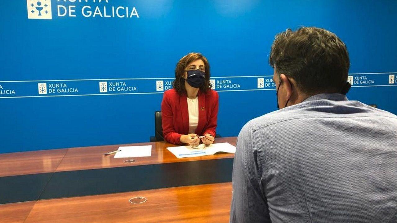 Ángeles Vázquez, conselleira de Medio Ambiente, Territorioe Vivenda: «Non hai barra libre para os parques eólicos en Galicia»