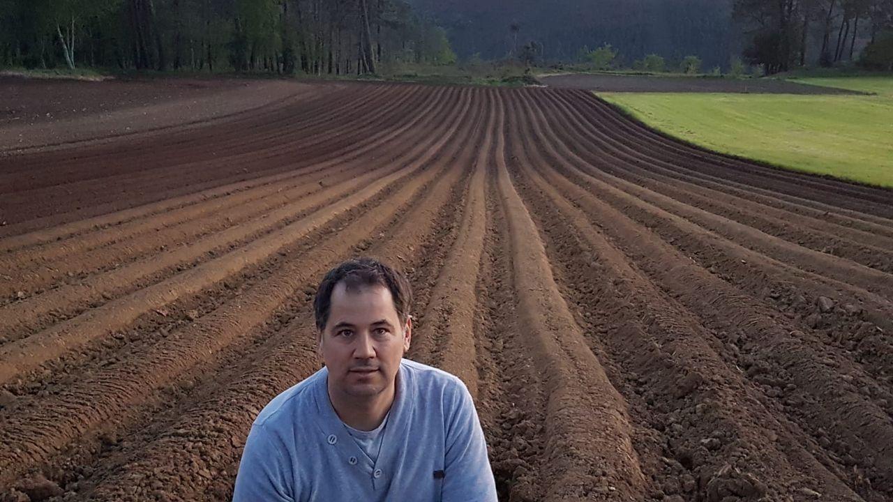 Miguel Negreira, productor de patata de Coristanco