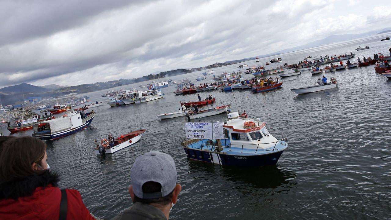 Concentración de la flota de bajura de Ribeira, Aguiño, A Pobra, Cabo de Cruz y Palmeira en la dársena ribeirense