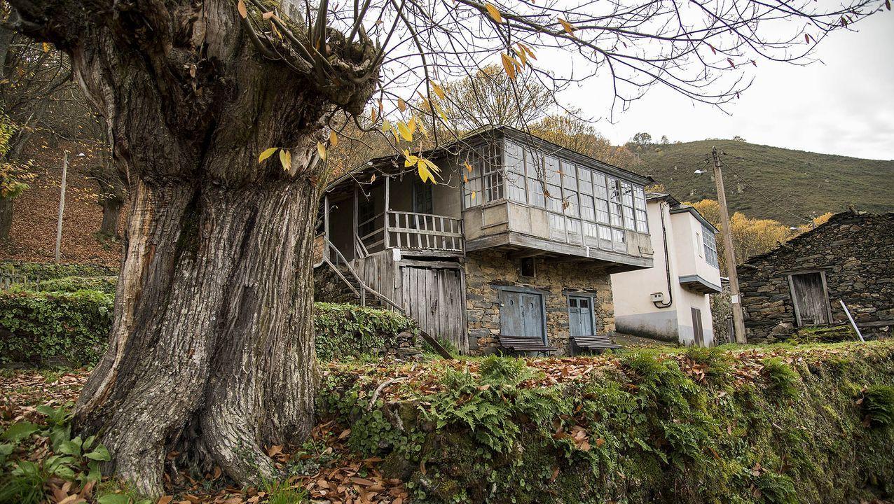 Un edificio que sirvió a la vez como bodega y palleira