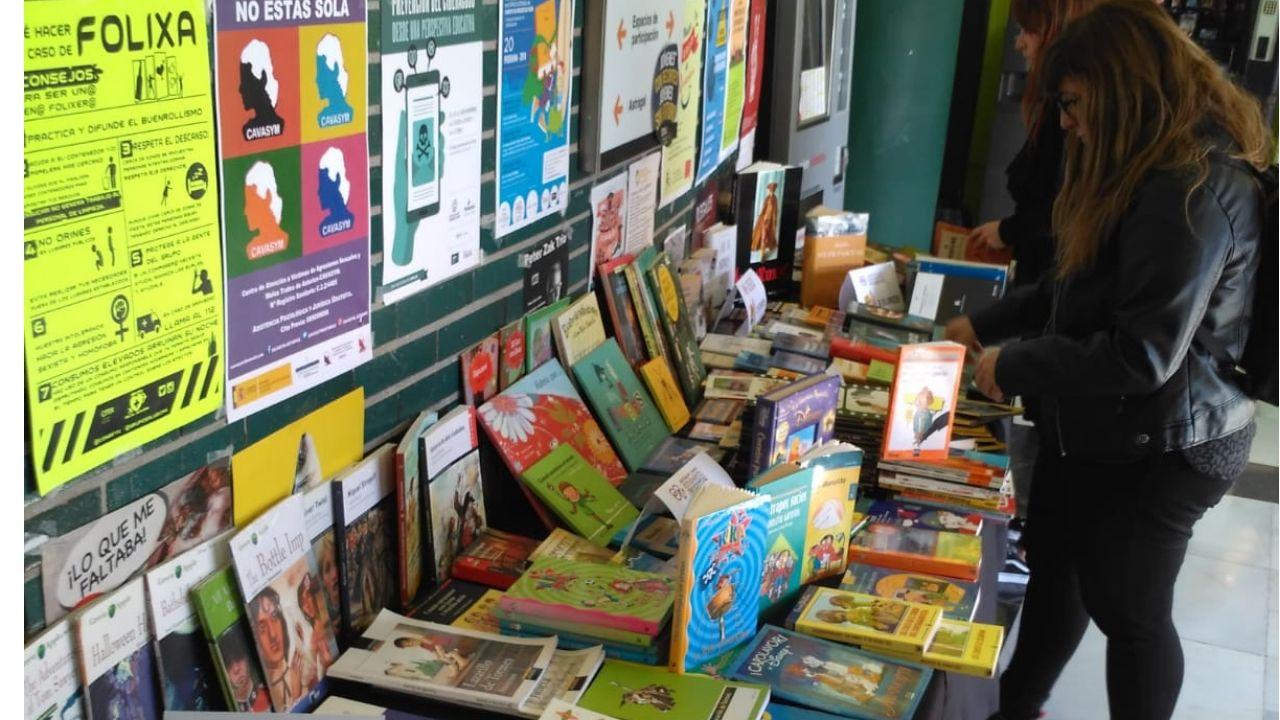 Mercadillo de libros en el Conseyu de Mocedá de Xixón. Gijón.Mercadillo de libros en el Conseyu de Mocedá de Xixón