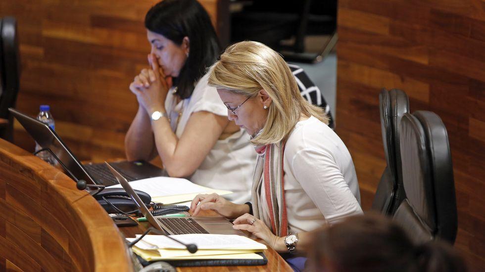 La diputada de Foro Asturias, Cristina Coto