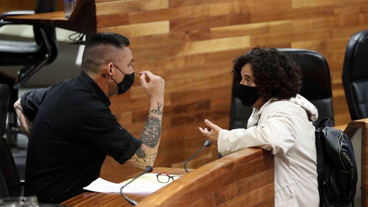 Berta Piñán, y el diputado de Podemos, Rafael Palacios.
