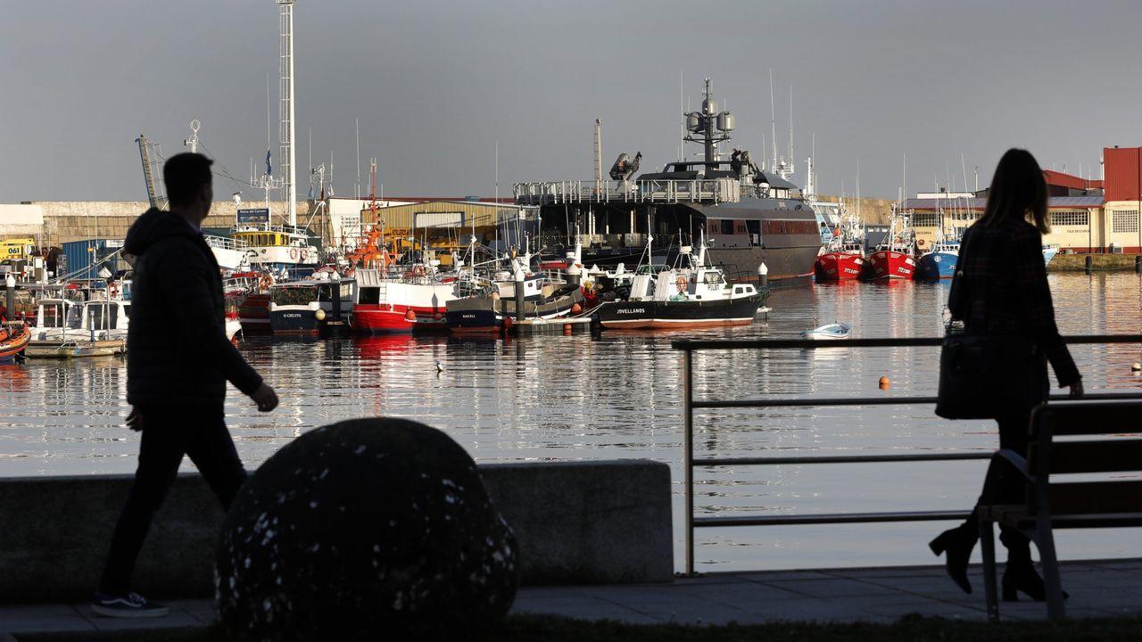 Pesqueros de artes menores en el puerto de Burela, en una imagen de archivo