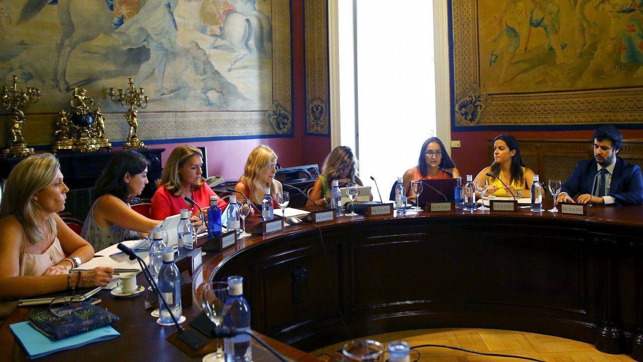 Un momento de la reunión de la subcomisión creada en la Cámara Baja para articular un pacto de Estado contra la violencia de género