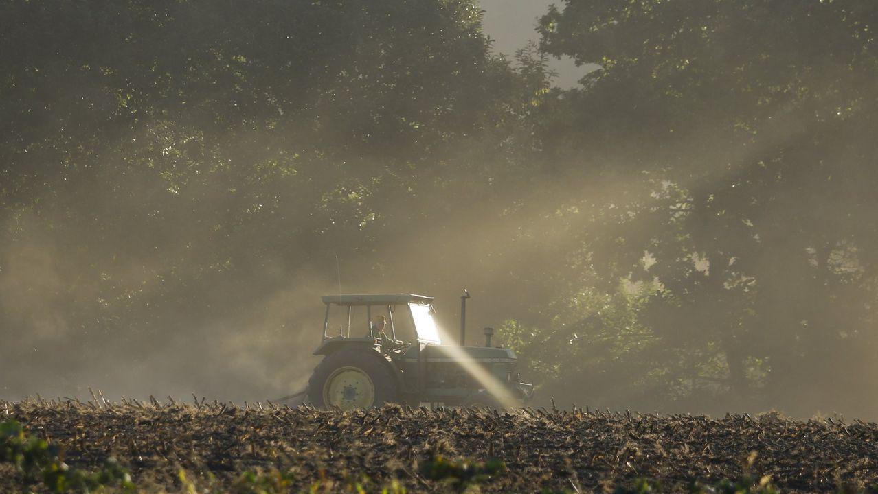 La gestión sostenible de los recursos obtenidos del suelo está ligada a su importancia como factor de crecimiento económico y de seguridad alimentaria