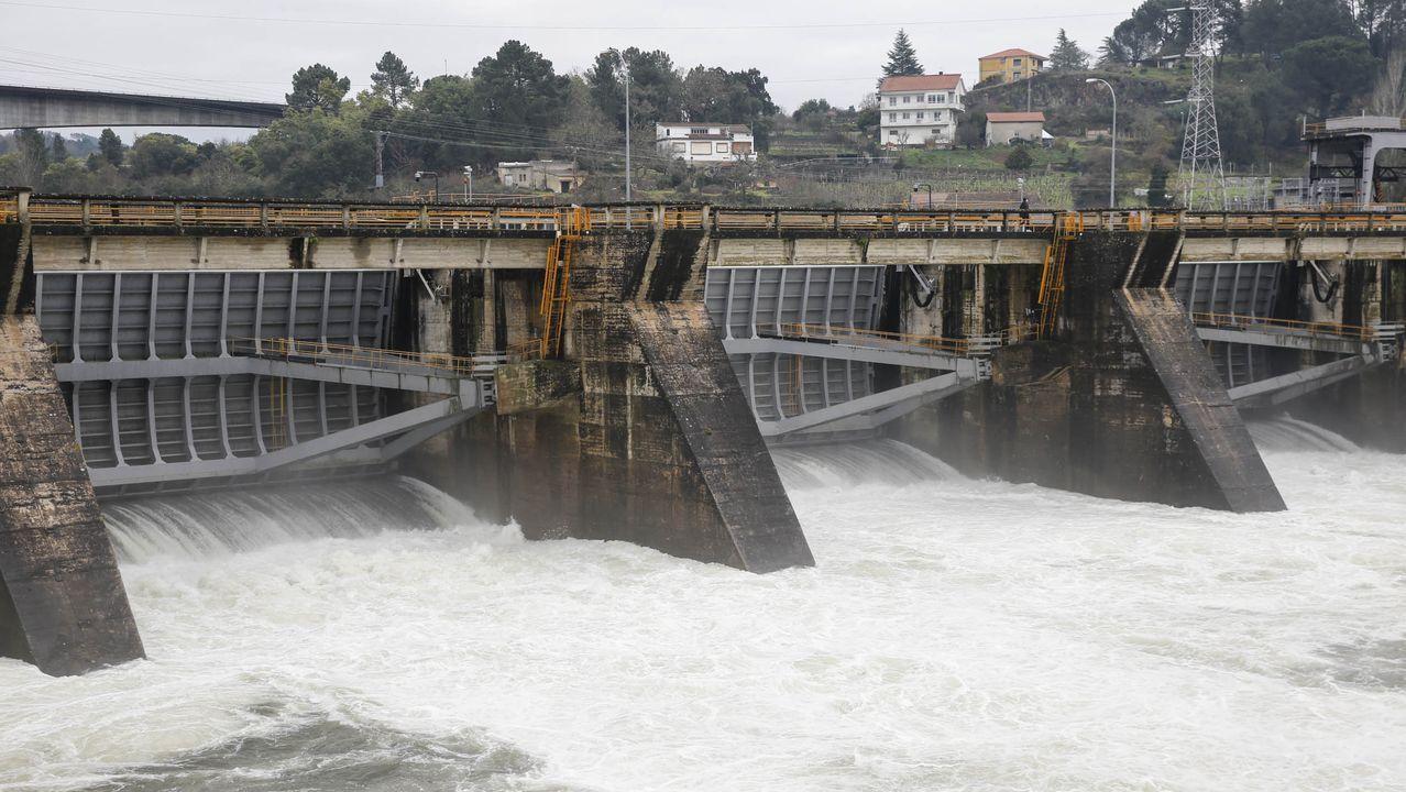 Río Miño a su paso por Ourense.La caza del jabalí está permitida con las nuevas restricciones