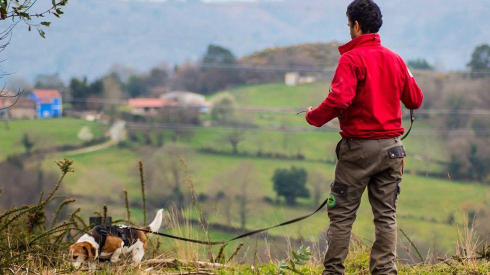 El vicealcalde de Laviana, Julio García..Unidad Canina de Rescate del Principado de Asturias