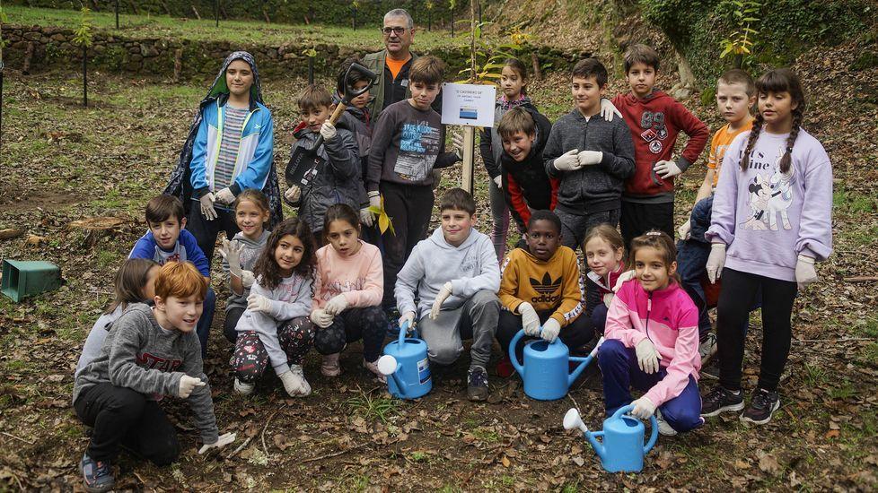Los escolares reforestan A Peroxa.El IES As Lagoas de Ourense tiene club de lectura desde hace años