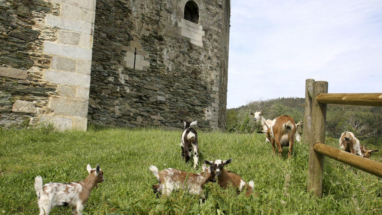 Castillo de Moeche, Moeche