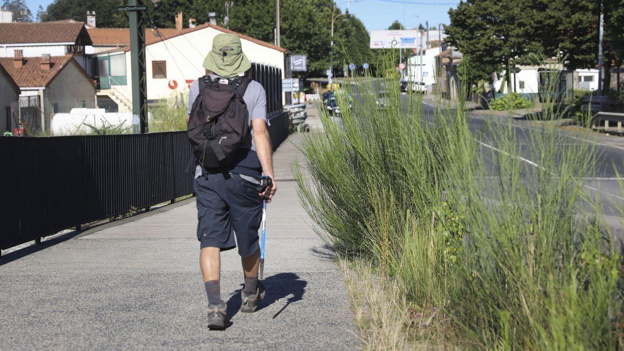 Maleza sin control en zonas urbanas de Santiago