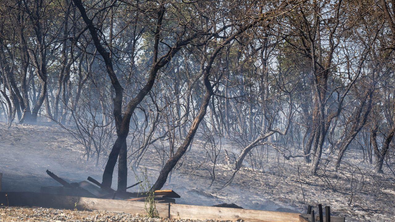 El fuego se ha acercado peligrosamente a las viviendas en la parroquia de Seoane