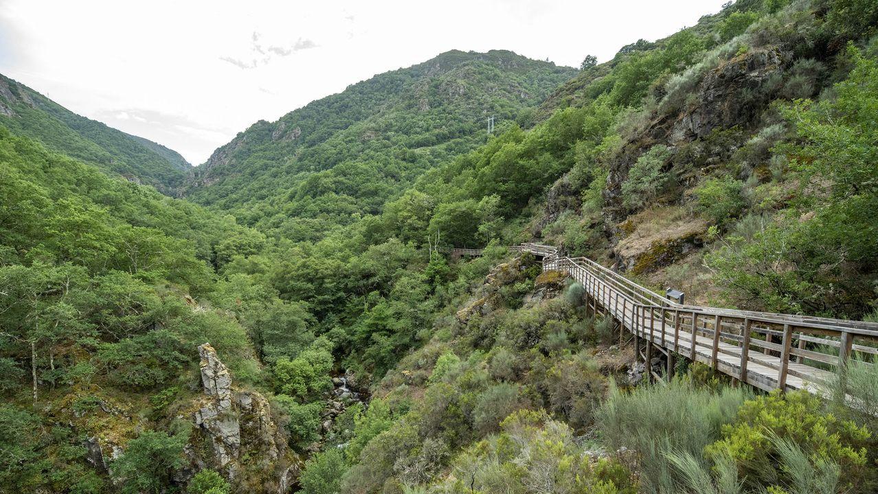 Una vista de la pasarela desde Cristosende