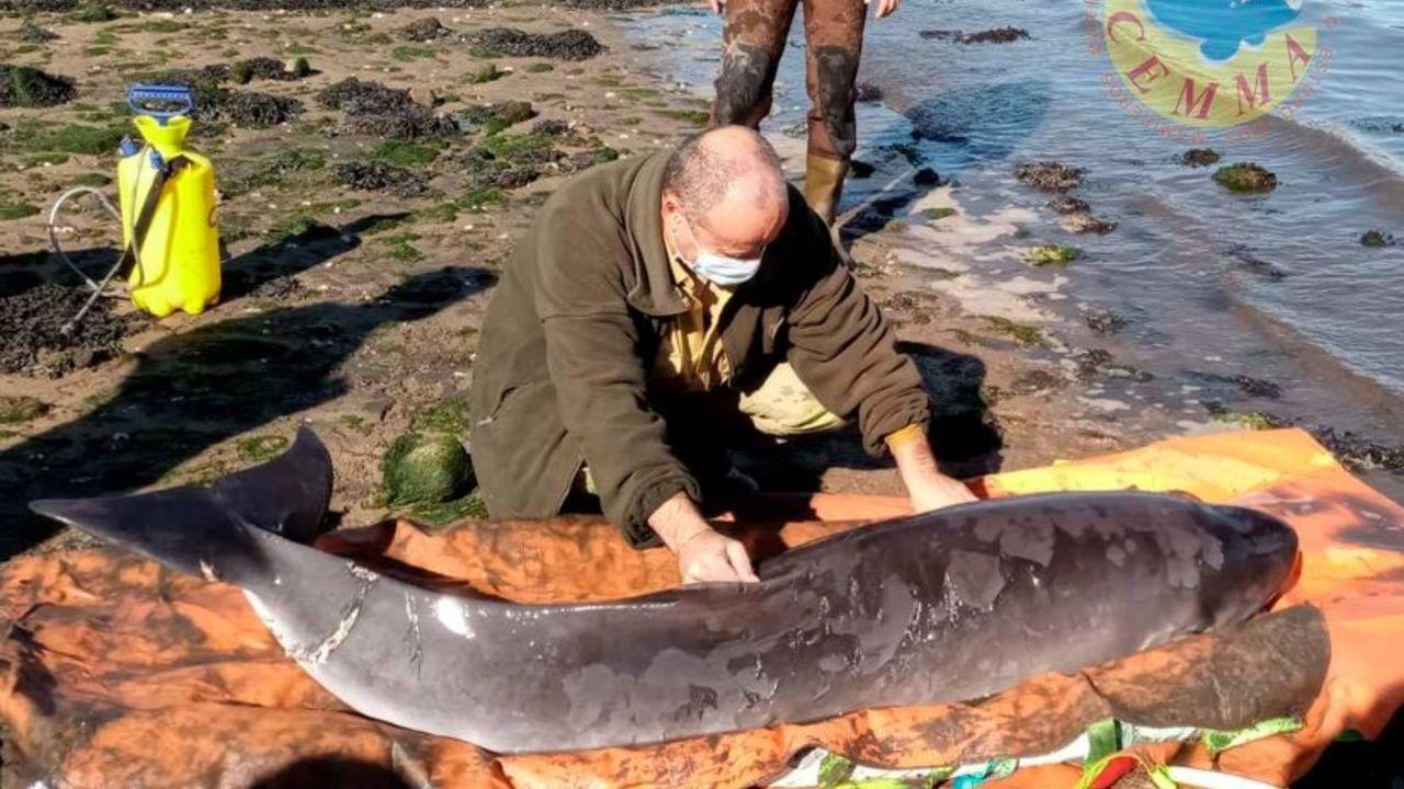 El Pesca 2, de Gardacostas y con base en Celeiro, en un rescate, en foto de archivo