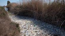 Miles de kilos de basura se concentran en el desembocadura del río Segura