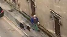Un hombre pasea a sus cabras por una calle de Monforte