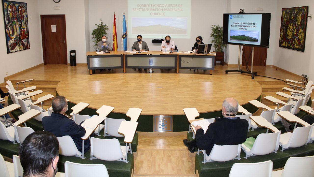 Reunión del comité técnico asesor de reestructuración parcelaria en Ourense