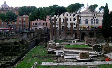 Área arqueológica de Torre Argentina, en Roma.