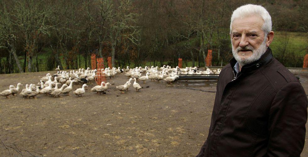 Silverio Tallón, en la finca de Vilardevós donde crecen los patos que sustentan la producción de «Ánades Galicia».
