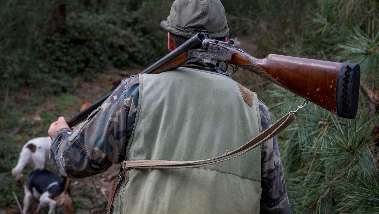 Los cazadores piden a la Xunta que tome medidas de cara a la próxima temporada.