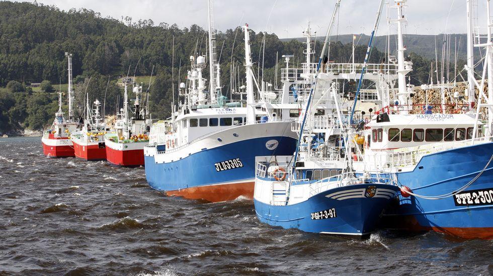 Flota amarrada en Celeiro.