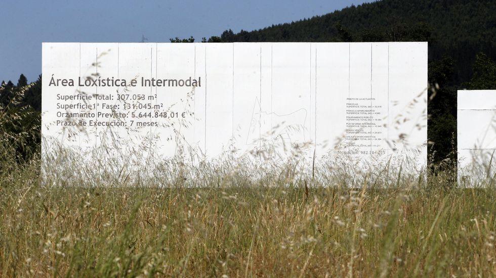 Un cartel en la entrada del puerto seco de Monforte parcialmente oculto por la maleza