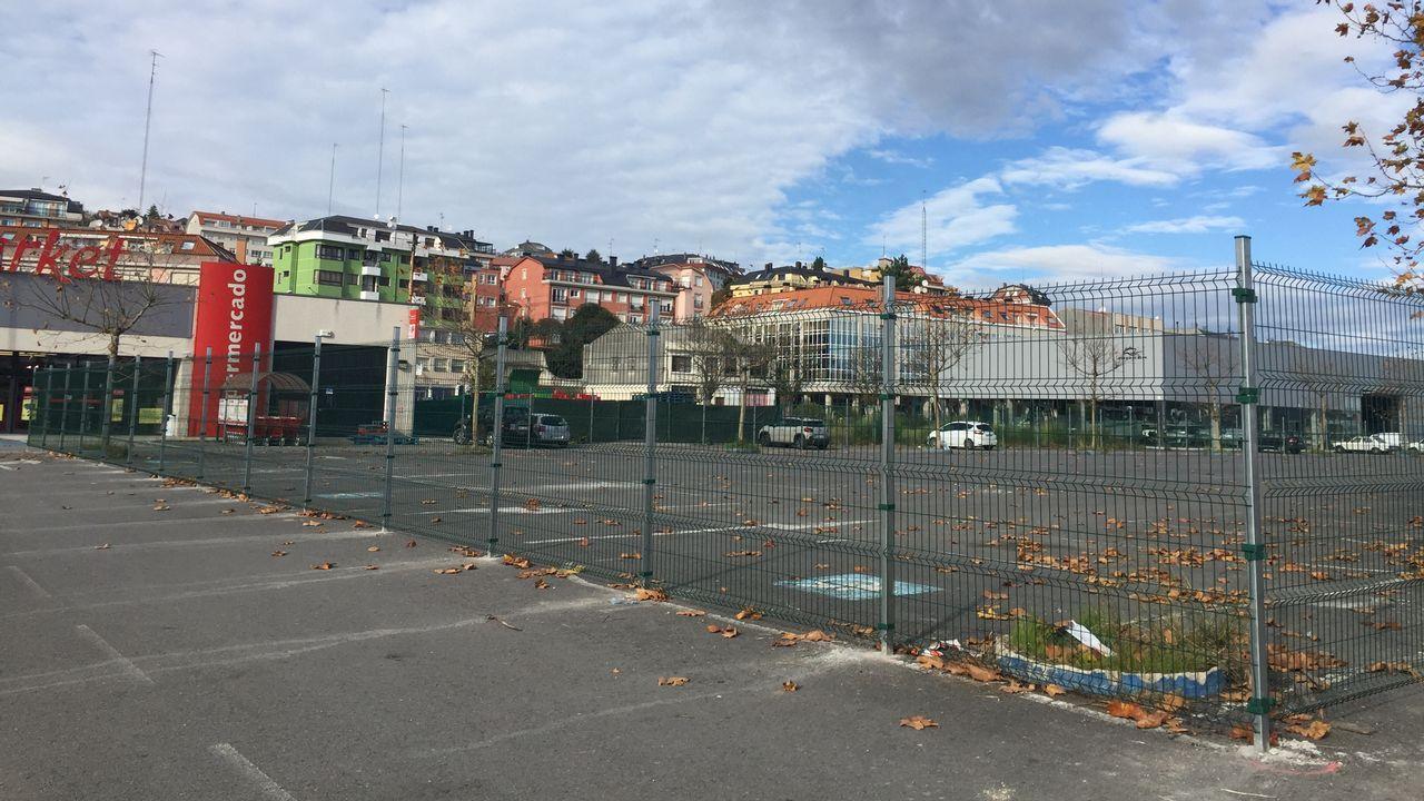 Ferrol corre y camina contra la violencia de género.Accidente mortal ocurrido cerca de Sada en octubre del 2018