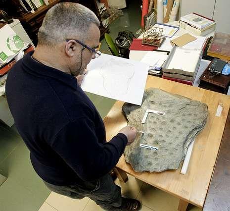 Hervés limpió la pieza en su estudio tras la aparición.