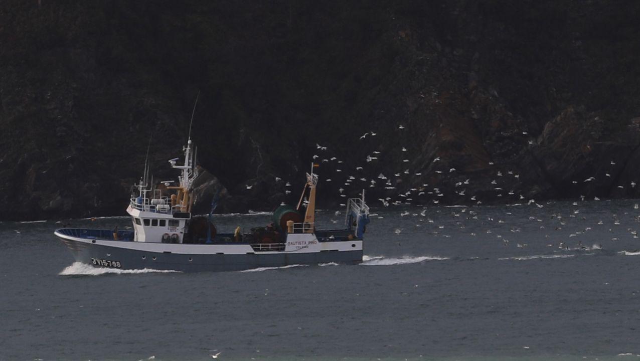 El texto sustituiría a las ley de pesca 7/1992
