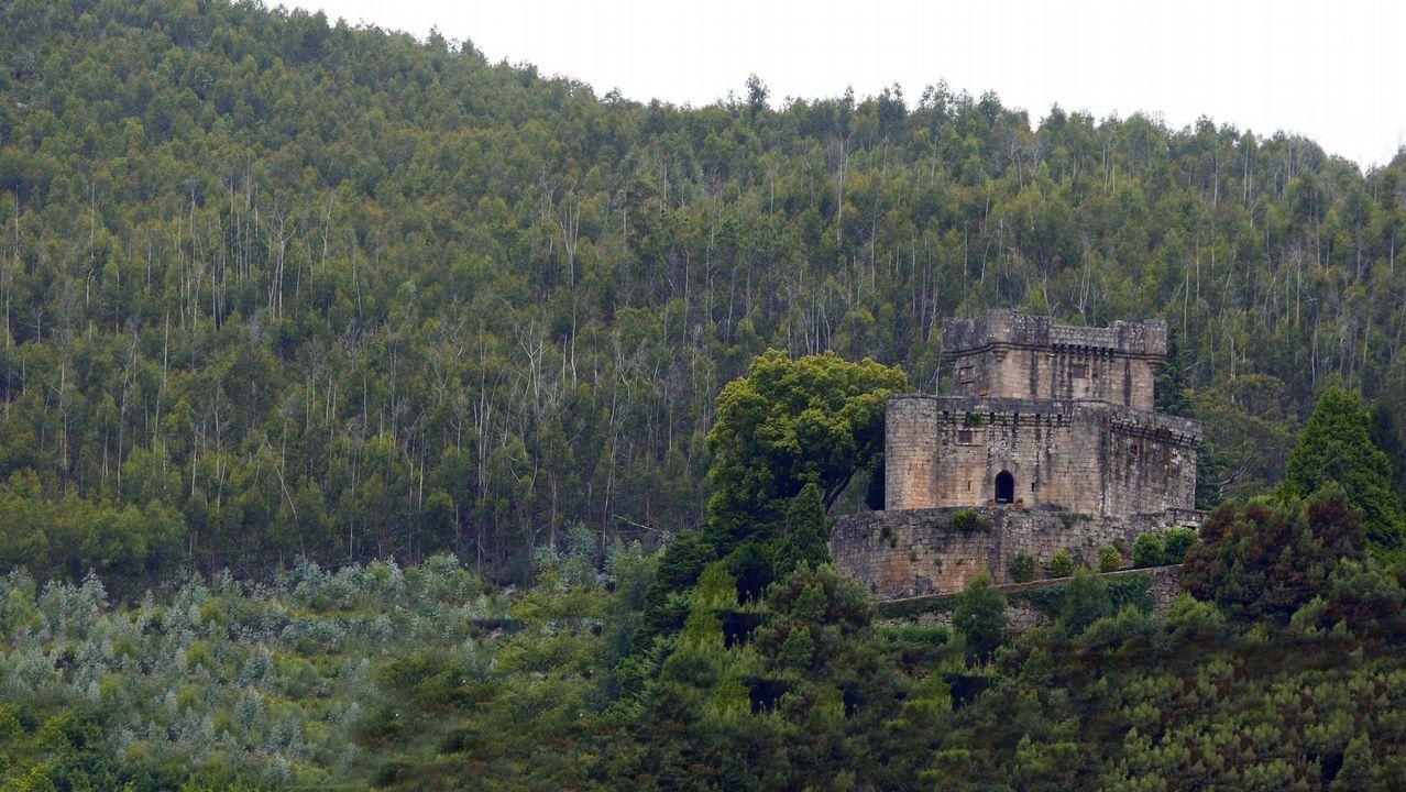 Castillo de Sobroso, Mondariz.
