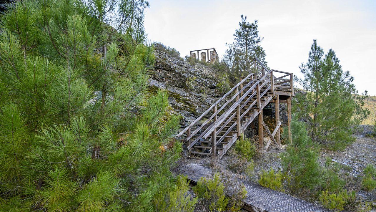 Una escalera de la madera facilita el acceso al mirador