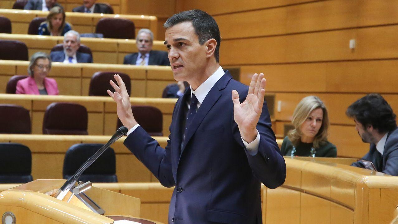 El presidente del Gobierno, Pedro Sánchez, durante un pleno en el Senado