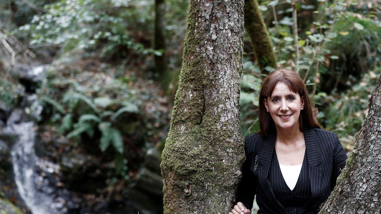 La pared hacia la cima de la ciudad.La escritora donostiarra Dolores Redondo posa en el bosque del valle navarro del Baztán, protagonista de su exitosa trilogía de intriga a la que regresa con la precuela «La cara norte del corazón»