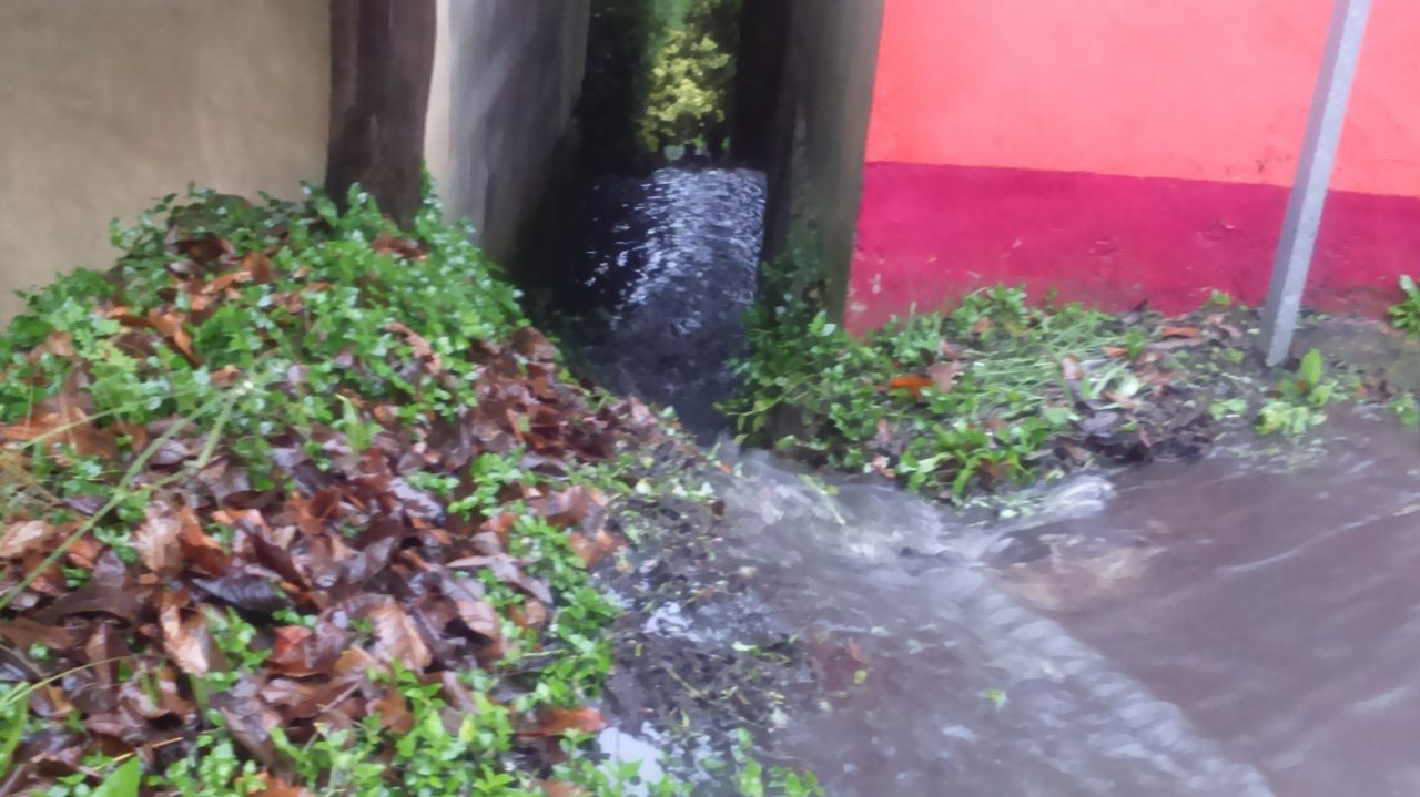 Las aguas residuales afectaron a varias fincas en la parroquia de Limodre