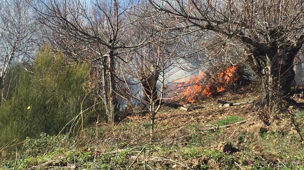 Incendio forestal en Candeda, en Carballeda de Valdeorras