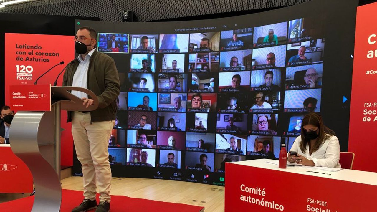Osos pardo en libertad.Adrián Barbón, presidente del Principado de Asturias, durante su intervención ante el comité autonómico