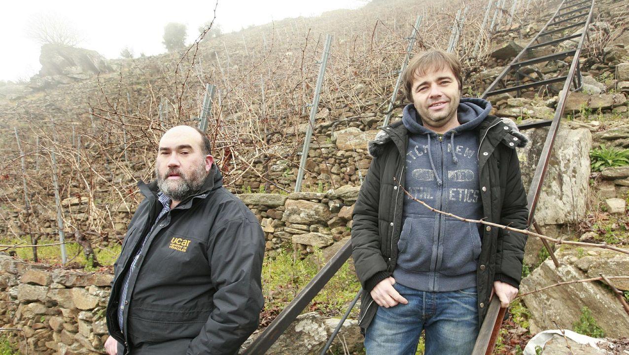 Pedro Rodríguez y el enólogo de Guímaro, Luis Buitrón, en la viña de Pombeiras