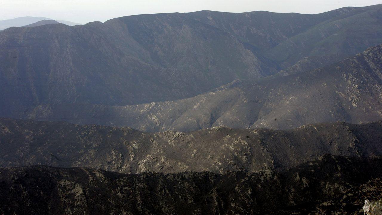Nadie se libra de la farrapada en Laza.El incendio forestal -este, en imagen de archivo- afectó a montes de la parroquia de Camba.