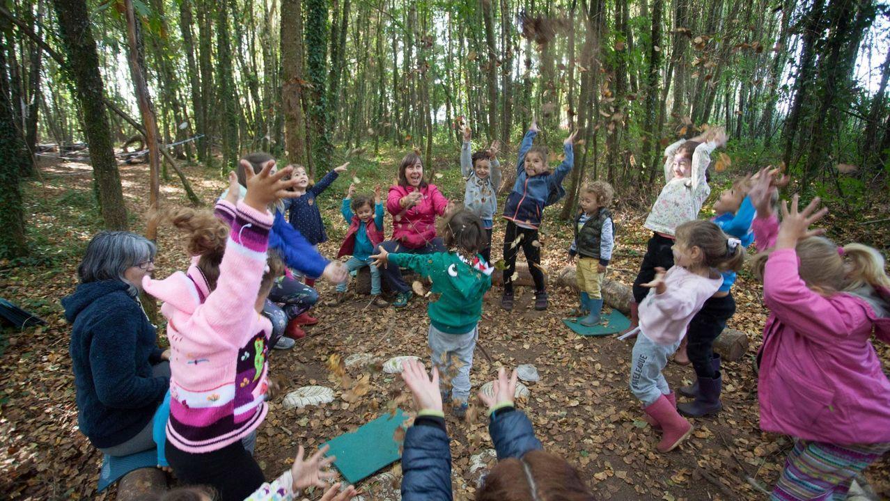 Escuela bosque Nenea, en San Xoán do Alto (Lugo)