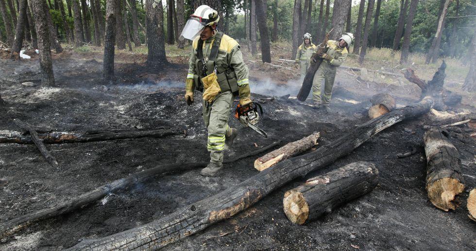 La superficie quemada está en una zona alta, lejos de los senderos, donde crecen los pinos pero también demasiada maleza.