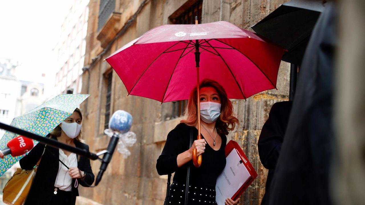 Concentración en defensa de los imputados por la ocupación de La Madreña.Teresa Mallada accede a la sede del TSJA, en Oviedo
